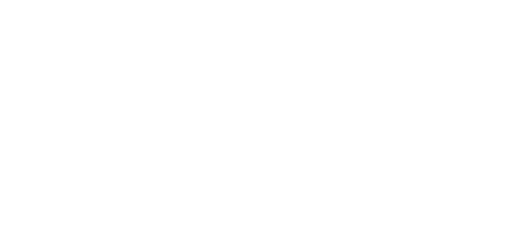 Annual Multimedia Award 2020